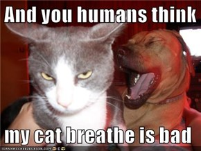 And you humans think   my cat breathe is bad