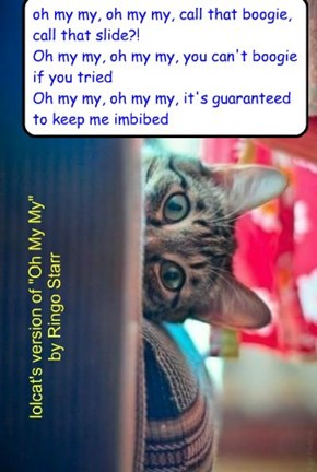 "lolcat's version of ""Oh My My"" by Ringo Starr"