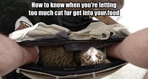 I sez iz better to gets ur fud into teh cat fur...