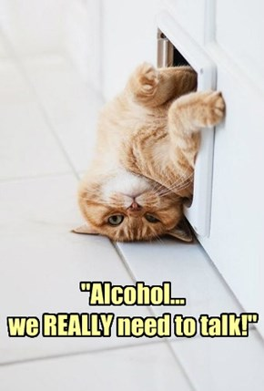 """Alcohol... we REALLY need to talk!"""