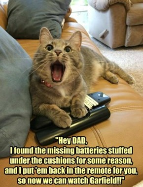 """No, son, we can't watch Garfield again, the batteries are 'missing' from the remote control!"""