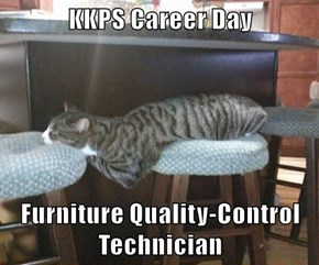 KKPS Career Day  Furniture Quality-Control Technician
