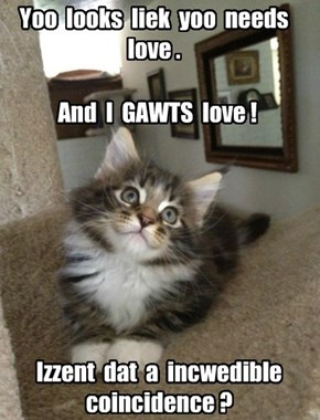 It ALWAYS is, little kitteh!