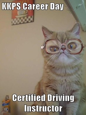 KKPS Career Day  Certified Driving Instructor