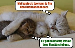 KKPS Great Anchobie Hunt: Momma kitties watch bery closely over der baby kitties who mite be a littl too bold..