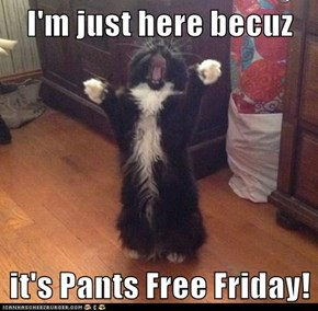 I'm just here becuz  it's Pants Free Friday!
