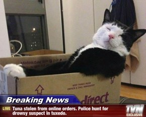 Breaking News - Tuna stolen from online orders. Police hunt for drowsy suspect in tuxedo.