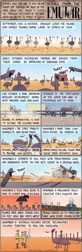 The Famed Emu Wars in Australia