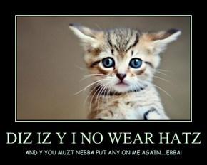 DIZ IZ Y I NO WEAR HATZ
