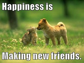 Happiness is  Making new friends.