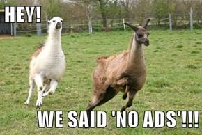 HEY!  WE SAID 'NO ADS'!!!