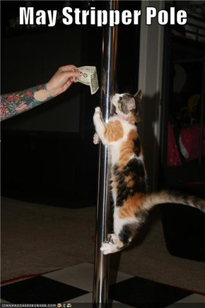 May Stripper Pole