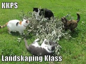 KKPS  Landskaping Klass