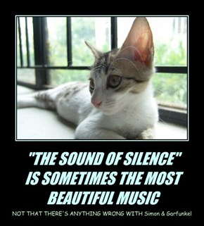 """THE SOUND OF SILENCE"" IS SOMETIMES THE MOST BEAUTIFUL MUSIC"