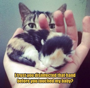 I trust you disinfected that hand before you touched my baby?