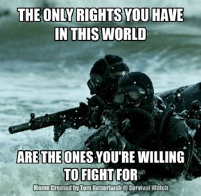 THE ONLY RIGHTS YOU HAVE  IN THIS WORLD