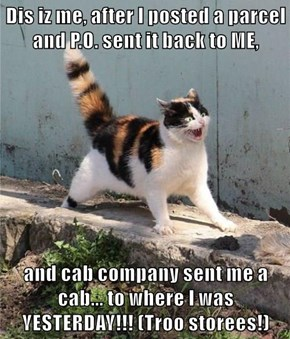 Dis iz me, after I posted a parcel and P.O. sent it back to ME,  and cab company sent me a cab... to where I was YESTERDAY!!! (Troo storees!)