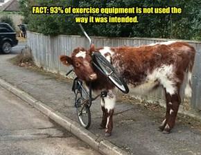 Training Is Advisable