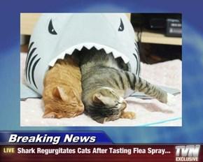 Breaking News - Shark Regurgitates Cats After Tasting Flea Spray...