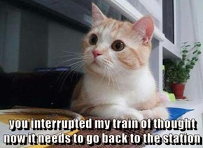 you interrupted my train of thought                                         now it needs to go back to the station