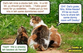 Nemo an' Dooby spend som kwiet time after dinner wiff der bery protectiv KKPS Dormitory Howsemama Mrs. Kitty-Nester befor she takes dem inside an' tucks dem into bed for teh nite..