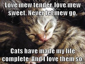 Love mew tender, love mew sweet. Never let mew go.  Cats have made my life complete. And I love them so.