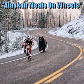 """Alaskan Meals On Wheels"""