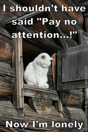 """I shouldn't have said """"Pay no attention...!""""  Now I'm lonely"""