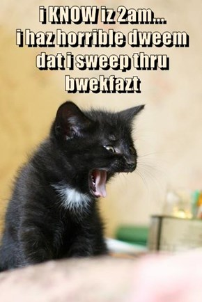 i KNOW iz 2am...                                              i haz horrible dweem                           dat i sweep thru bwekfazt