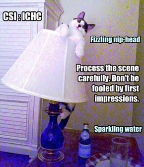 CSI : ICHC Tip #47