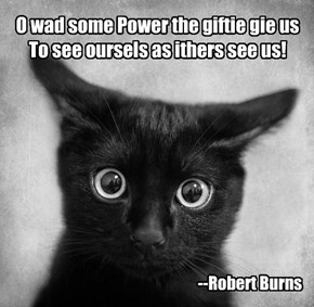Oh would some power the gift give us, To see ourselves as others see us!