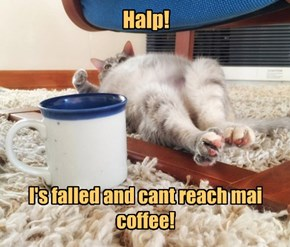 Is ther a coffee halp line?