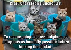 Crazy Cat Person's Bucket List  To rescue, adopt, foster and place as many cats as humanly possible before kicking the bucket.