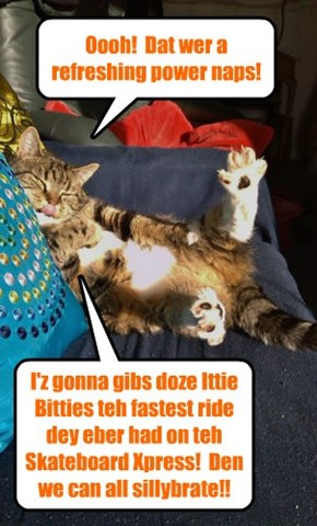 Coach Bellbottoms stretches out hiz powerful legs.. He just received a call from Tiny Tina wanting a push on teh Skateboard Xpress ober to teh Dormitory to sillybrate wiff Dooby an' Nemo an' der new fownd mamacat Sahara..