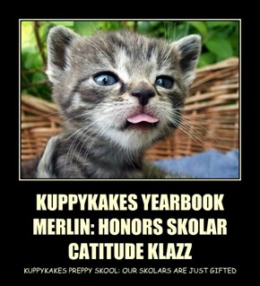 KUPPYKAKES YEARBOOK MERLIN: HONORS SKOLAR CATITUDE KLAZZ