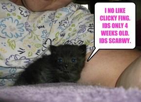 EVERYFING NOO EBEN THE KITTY.