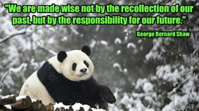 """We are made wise not by the recollection of our past, but by the responsibility for our future."""