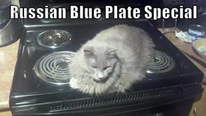 Russian Blue Plate Special