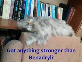 Got anything stronger than Benadryl?