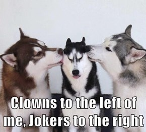 Clowns to the left of me, Jokers to the right