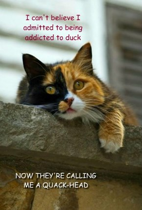 I can't believe I admitted to being addicted to duck