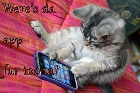 Were's da app fur toona?