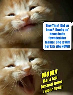Tiny Tina hears som great news!