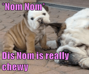 *Nom Nom*  Dis Nom is really chewy