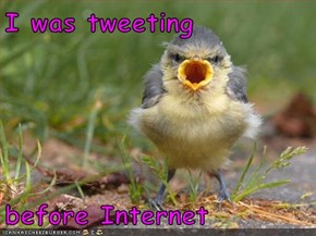I was tweeting   before Internet