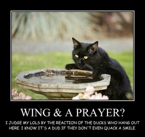 WING & A PRAYER?