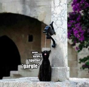 *gargle*