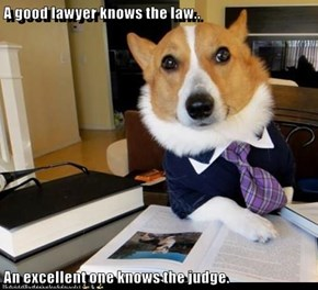 A good lawyer knows the law..  An excellent one knows the judge.