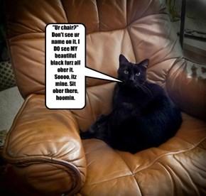 """""""Ur chair?"""" Don't see ur name on it. I DO see MY beautiful black furz all ober it. Soooo, itz mine. Sit ober there, hoomin."""