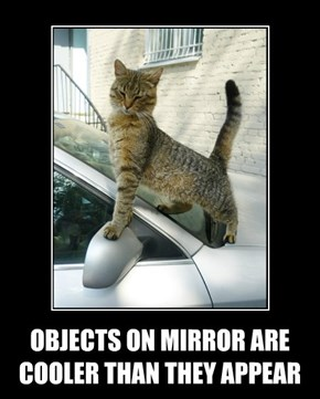 OBJECTS ON MIRROR ARE COOLER THAN THEY APPEAR